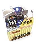 MTEC H4 Xenon-Effekt-Leuchtmittel, 12 V, 100/90 W,...