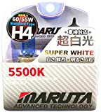 Mtec H4 Super White 60/55 Watt